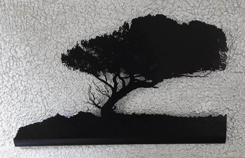 The great oak_4