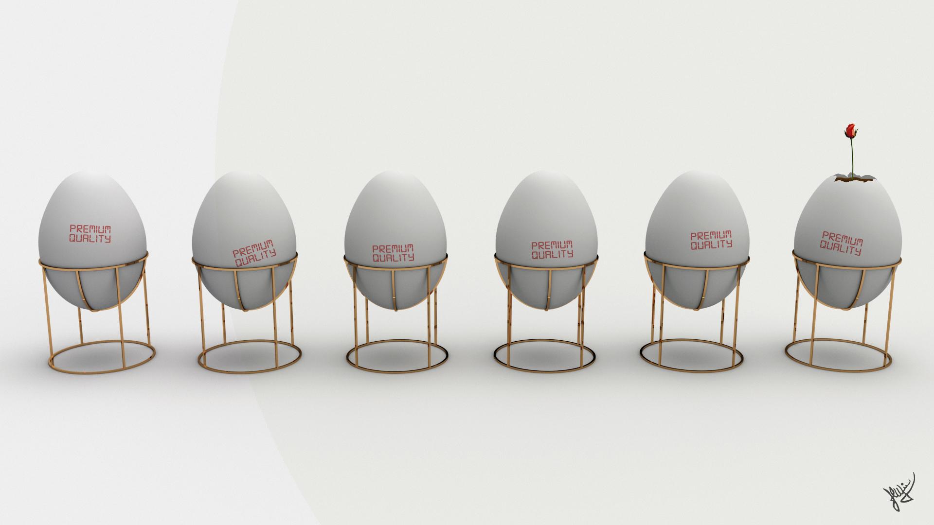 Uova di gallina allevate a terra_firma